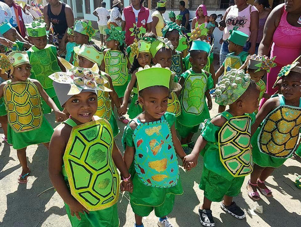 Kids Turtles